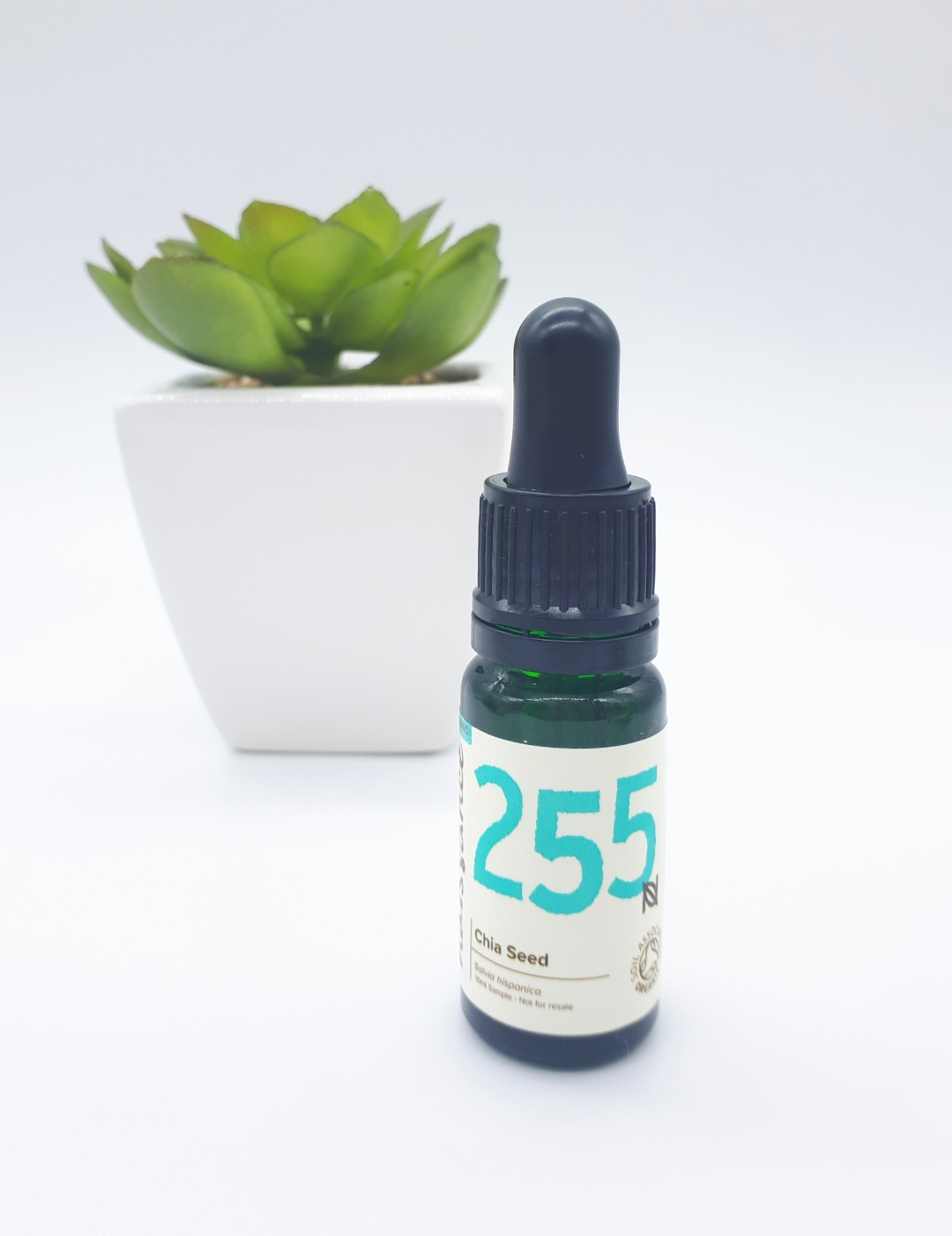 A dark green dropper bottle with a cream label with black and bright blue writing stands on a white backdrop. In the background, slightly to the left, is a bright green succulent plant in a white square pot.