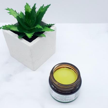 Jar Open with Cactus Pot-01.jpeg